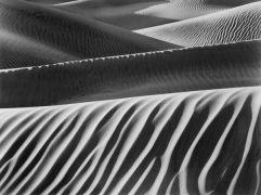 Fabric Folds, Mesquite Dunes, 2006, 22 x 28 inches, Silver Gelatin Photograph