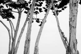 KENDALL IN TREETOPS SANTA BARBARA 2018,