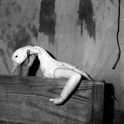One Arm Goose, 200416-1/2 x 16 Silver Gelatin Photograph, Ed. 2025-1/2 x 24 Silver Gelatin Photograph, Ed. 6