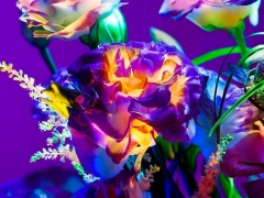 Electric Blossom #282, 2012, 18 X 23 inches, Archival Pigment Print, Edition of 10
