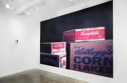 """""""Fitting at Metro Pictures,"""" installation view, 2011. Metro Pictures, New York."""