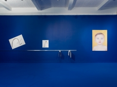 The Pale Fox. Installation view, 2014.Chisenhale Gallery, London.