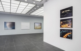 The Octopus. Installation view, 2015. Frankfurter Kunstverein, Frankfurt.