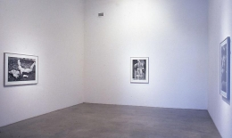 Installation view, 1999. Metro Pictures, New York.