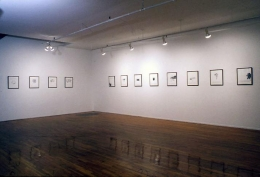 """""""Dreams That Money Can Buy You,"""" installation view, 1993. Metro Pictures,  New York."""