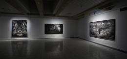Installation view, 2017. Sara Hildén Art Museum, Tampere, Finland.