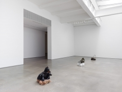 Year of The Dog. Installation view, 2018. Metro Pictures, New York.