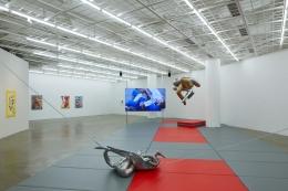 Camille Henrot Art Sonje Center Installation View