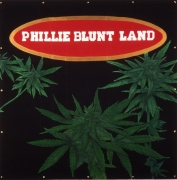 Phillie Blunt Land, 1993. Latex on tarpaulin, 96 x 96 inches (243.8 x 243.8 cm).
