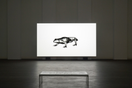 Timelapse. Installation view, 2021. S.M.A.K., Ghent. Photo: Dirk Pauwels.