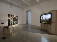 T. J. Wilcox, 2010, installation view. Metro Pictures, New York