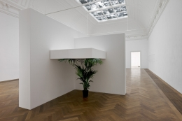 "Untitled, 2012. Plant (any species of banana or palm), Wood, Dimensions variable (contingent on corner with install), Plant should be approx 170 cm tall but ""suppressed"" by shelf above. Installation view, 2012. Kunsthalle Basel."