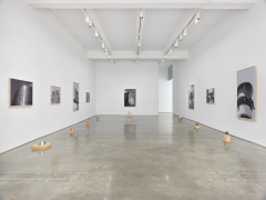 Domestic Space. Installation view, 2018. Metro Pictures, New York.