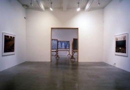 """""""The Forest for the Trees,"""" installation view, 1998. Metro Pictures, New York."""