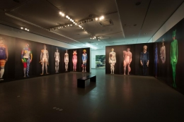 Installation view, 2016. NRW-Forum Düsseldorf, Germany.