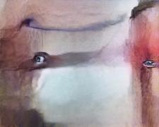 Human Eyes (Corpus: The Humans), Adversarially Evolved Hallucination, 2017