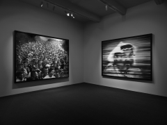 Fugitive Images. Installation view, 2019. Metro Pictures, New York.