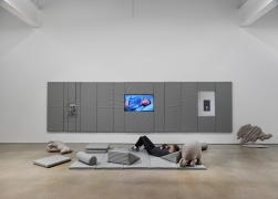 Evidence. Installation view, 2018. Metro Pictures, New York.