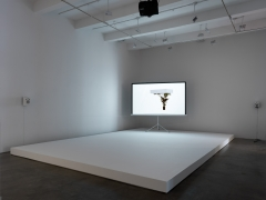 Afterform, 2013. HD Video, Plinth, Tripod projection screen, HD projector, Stereo speakers, Plinth 8 x 312 x 192 inches (20.3 x 792.5 x 487.7 cm), 5 minutes 10 seconds. Installation view, 2013. Metro Pictures, New York.