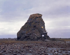 Mammoth, 2008. Mounted c-print on 6mm Sintra, 60 x 75 inches (152.4 x 190.5 cm)
