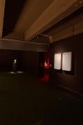 Days are Dogs. Installation view, 2017. Palais de Tokyo, Paris. Photo: Aurélien Mole.