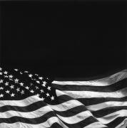 The Last Flag (Dedicated to Howard Zinn), 2015