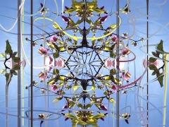 Symphonic, Pollinators, DG Krueger, digital, photographs, magnolias