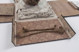 Rose of Jericho, 2013–2014, detail, Mixed media