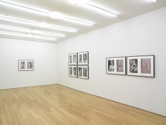 Miscegenated Family Album, 1980/1994, Installation view, Alexander Gray Associates, 2008