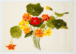 "Untitled, from the ""Florals"" series [058], c. 1978, Watercolor On Paper"