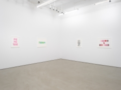 Kay Rosen: Stirring Wirds, installation view, Alexander Gray Associates (2018)