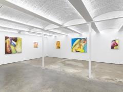 Joan Semmel: A Balancing Act, Installation view
