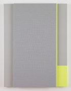 Soft Gray Tone with Reverberation #2,2013