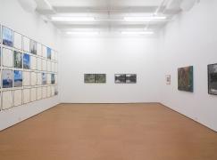 Landscape As an Attitude, Installation view, Alexander Gray Associates, 2010