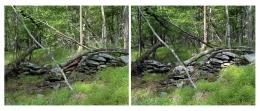Dawit L. Petros, Mimesis (The Woodstock Series) Untitled (Boundary Marker), 2007