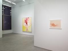 Joan Semmel: New Work, installation view, Alexander Gray Associates, 2016