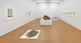 Hassan Sharif,Installation view, Alexander Gray Associates,2012