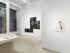 Regina Silveira, installation view, Alexander Gray Associates, 2016