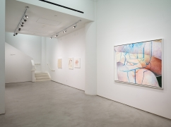 Joan Semmel: New Work, installation view, Alexander Gray Associates, 2016