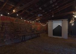 Regina Silveira:Quimera Installation View