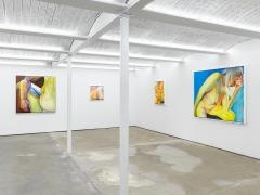 Joan Semmel:A Balancing Act, Installation view