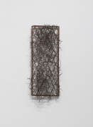 Iron, 2014, Iron frame and wire