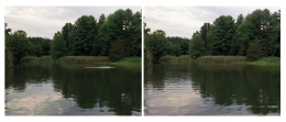 Dawit L. Petros, Mimesis (The Woodstock Series) Untitled (River), 2007