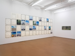 Landscape As an Attitude, Installation view, Alexander Gray Associates, 2010