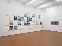 Landscape As an Attitude,Installation view,Alexander Gray Associates, 2010
