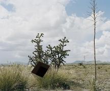 Single Cube Formation, No. 3, Marfa, TX (2011)