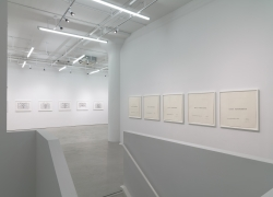 Luis Camnitzer: The Mediocrity of Beauty, installation view, Alexander Gray Associate, 2015