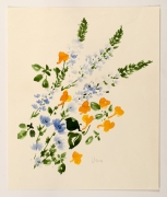 "Meadow Flowers, from the ""Florals"" series [050], c. 1978, Watercolor On Paper"