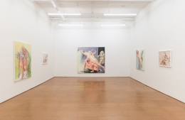 Joan Semmel, Installation view, Alexander Gray Associates, 2013