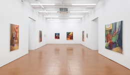 Hugh Steers, installation view, Alexander Gray Associates, 2013